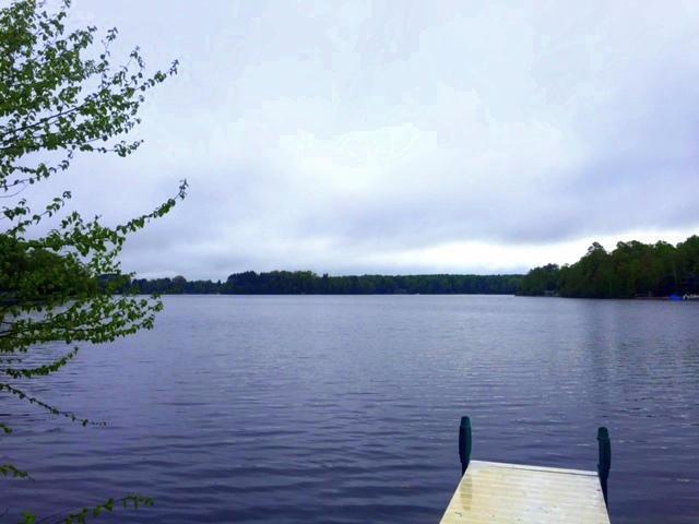 1821 Big Lake, Gaylord, MI 49735