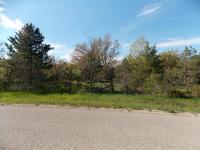 Wartella Road, Cheboygan, MI 49721