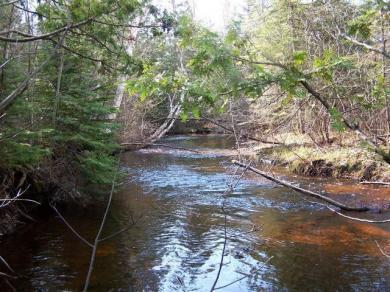 Ocqueoc Lake Road, Ocqueoc, MI 49759