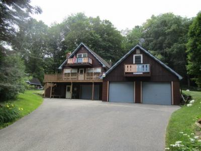 Photo of 13402 E Birch Street, Wolverine, MI 49799