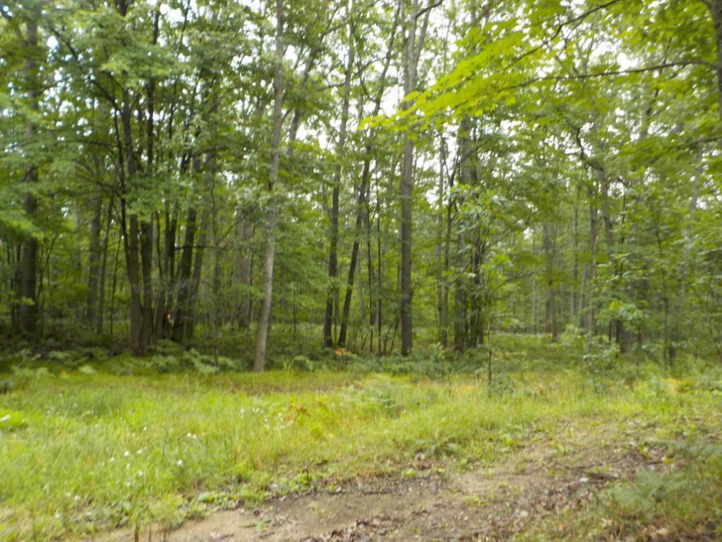 00 Forest Way, Roscommon, MI 48653