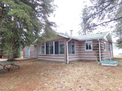 1203 Lakeview Drive, Mio, MI 48647