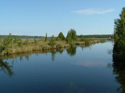 Photo of Cedar Springs Lane, Indian River, MI 49749