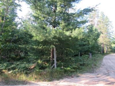 Photo of Richard Lake Road, Millersburg, MI 49759