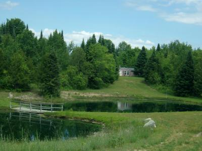 Photo of 4838 Rondo Road, Wolverine, MI 49799
