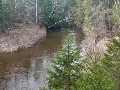 Photo of N River Lane, Millersburg, MI 49759