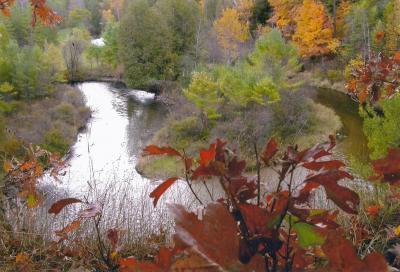 Photo of 8121 Sturgeon Valley Drive, Indian River, MI 49749