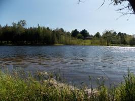 Black River Trail, Cheboygan, MI 49721